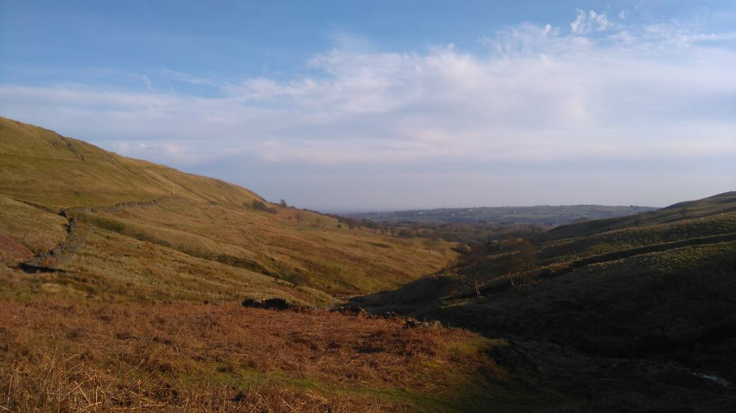 HOLCOMBE MOOR WESTERLY